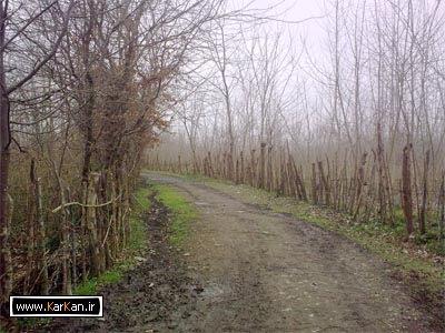 طبیعت روستای کرکان بندرانزلی