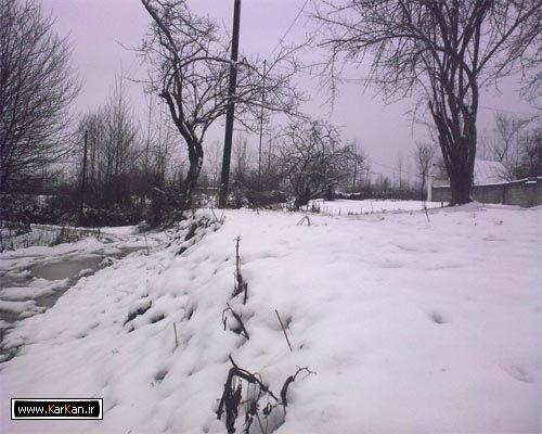 برف در روستای کرکان بندرانزلی