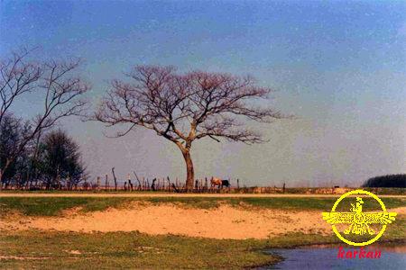 تصاویری از روستای آبکنار سری(1)